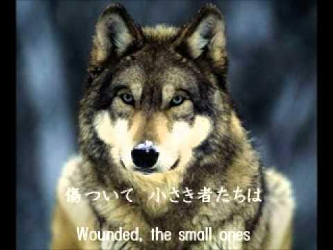 J adult contemporary For The Small Wounded – Miyuki Nakajima with English lyrics