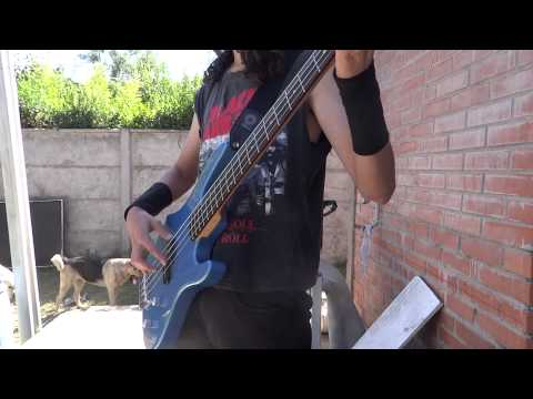 In bloom nirvana bass cover HD washburn xb100